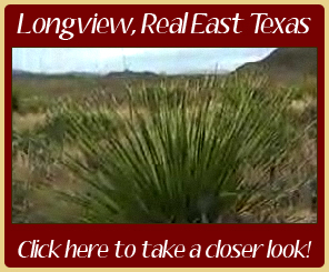 Information Video about Longview Texas